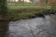 River Taw at Taw Green