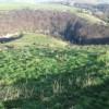 Hillside towards Miller's Dale