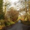 Lane to North Wyke (2)