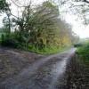 Near Ridge Hill