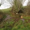 Field boundary junction near Spreyton