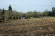 Recently cropped field Wadbury Valley