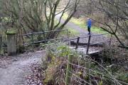 Lofthouse Colliery Nature Park Tour (22)
