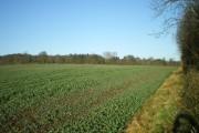 Farmland north of the M54