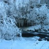 Icicles above Glenmuir Water