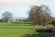 Farmland,  Burley
