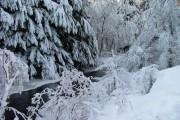 A partially frozen River Pattack
