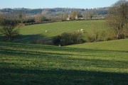 Farmland at Doddenham