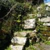 Old steps by St Dennis Church