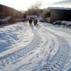 Footpath through Abbey Farm