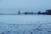 Snowy Irlam Moss