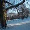 Chelsea Park, Brincliffe, Sheffield  in January Snow