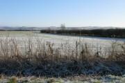 Looking East across farmland towards Ashbury