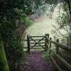 Gate on the footpath near Roebuck Farm