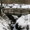 Wooden Bridge In Luggie Glen