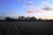 Fields at Hainford