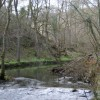 The River Wye in upper Miller's Dale