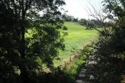 Farmland by Knockentiber
