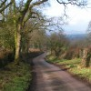 Lane to Wimple near Aller Grove