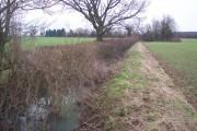 The River Beult near Fleeden Farm