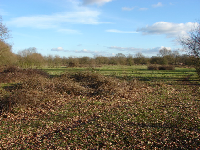 Chobham, open space