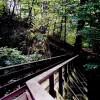 Glen Maye - Footbridge over river and gorge