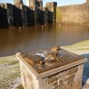 Caerphilly: tactile castle model