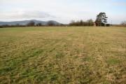 Farmland at Hanley Castle