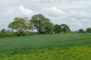 Farmland near Hack Green, Cheshire