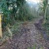 Path to Bathley