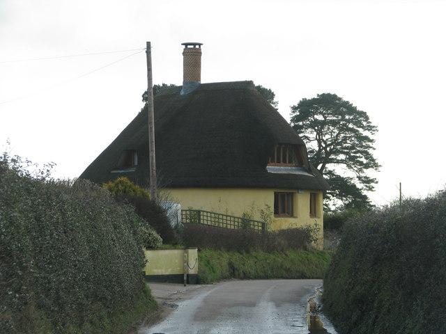 Yellow cob house at Cadhay