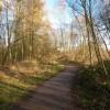 Woodland Path at Low Barns Nature Reserve