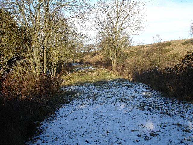 Old railway trackbed by Newsham Beck