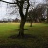 Haresfinch Park, St Helens