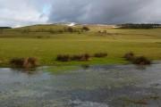 Farmland at Romanno Bridge