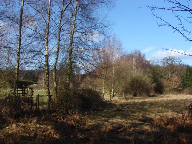 Fields near Mink farm