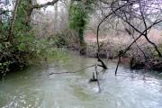 River Troney in spate