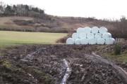 Bales below Ingsdon Hill