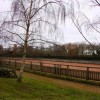 Horse training ring in Waterstock