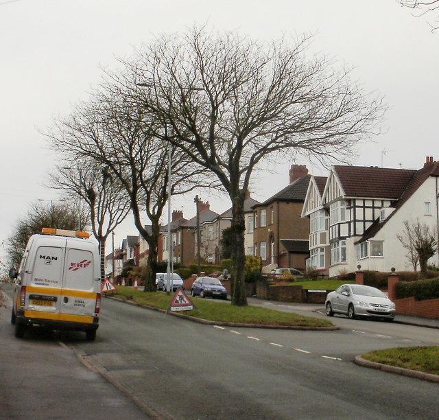 Tree cutting on St Julians Road, Newport