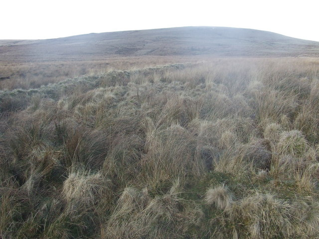 Looking towards Grindle end from the track across the southern edge of Turton Moor