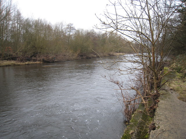 River Wear near Marston Lake