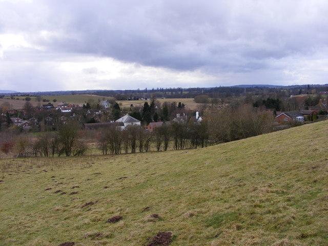 Hilton View