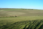 Farmland near Little Weighton