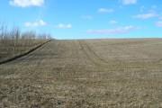 Farmland off Melton Bottom