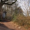 Bridleway at Craig-y-Parc - Pentyrch