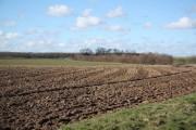 Ailby farmland