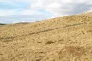 Old boundary wall on the moorland at Am Maol
