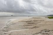 Tidal Sands at Hammerside Point