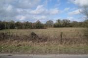 Field by John Acres Lane